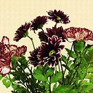 Burgundy Petals by Susan Werby