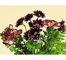 Burgundy Petals Photographic Print