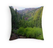 Mountainside Stream Throw Pillow