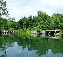 Bridges at Lake Killarney by Susan S. Kline
