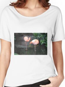 National Aviary Pittsburgh Series - 3 Women's Relaxed Fit T-Shirt