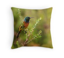 'Colour Profile III' Throw Pillow