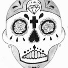 skull - drawing by Perggals© - Stacey Turner