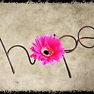 Hope Card 1 by Martie Venter