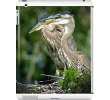Two Baby Great Blue Herons iPad Case/Skin