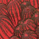 Red Cactus 3 by JessicaMWinder