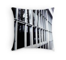 window panes Throw Pillow