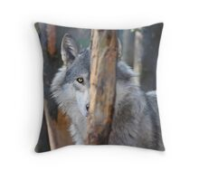 Wary Wolf Throw Pillow