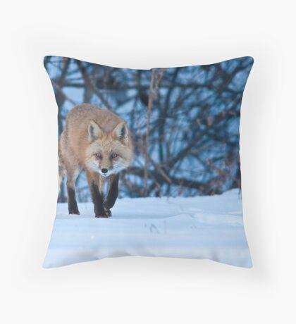 Stalking Around Throw Pillow