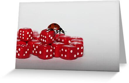 Ladybird .......:) by Ellen van Deelen