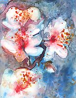 Cherry Blossom II by Yevgenia Watts