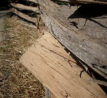 Split Rail Fence by AJ Belongia