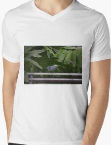 National Aviary Pittsburgh Series - 11 Mens V-Neck T-Shirt