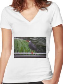 National Aviary Pittsburgh Series - 13 Women's Fitted V-Neck T-Shirt