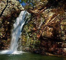 peavine falls by Phillip M. Burrow