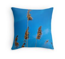 Reeds and Blue Sky Throw Pillow