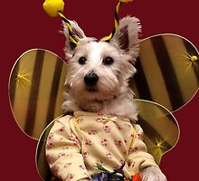 Bella the Bee by Pascal Inard