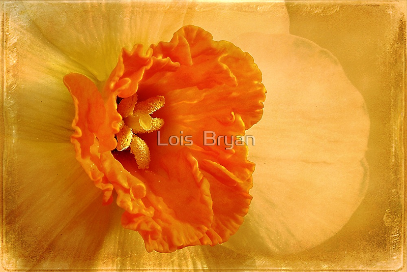 Inviting by Lois  Bryan