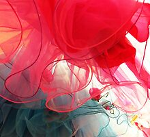 Tulle by MsGourmet