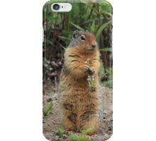 Columbian Ground Squirrel iPhone Case/Skin
