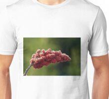 Laciniata Fruit Drupes of the Staghorn Sumac - Rhus typhina (hirta) L Unisex T-Shirt