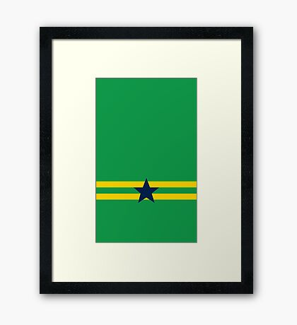Independents' Flag Framed Print