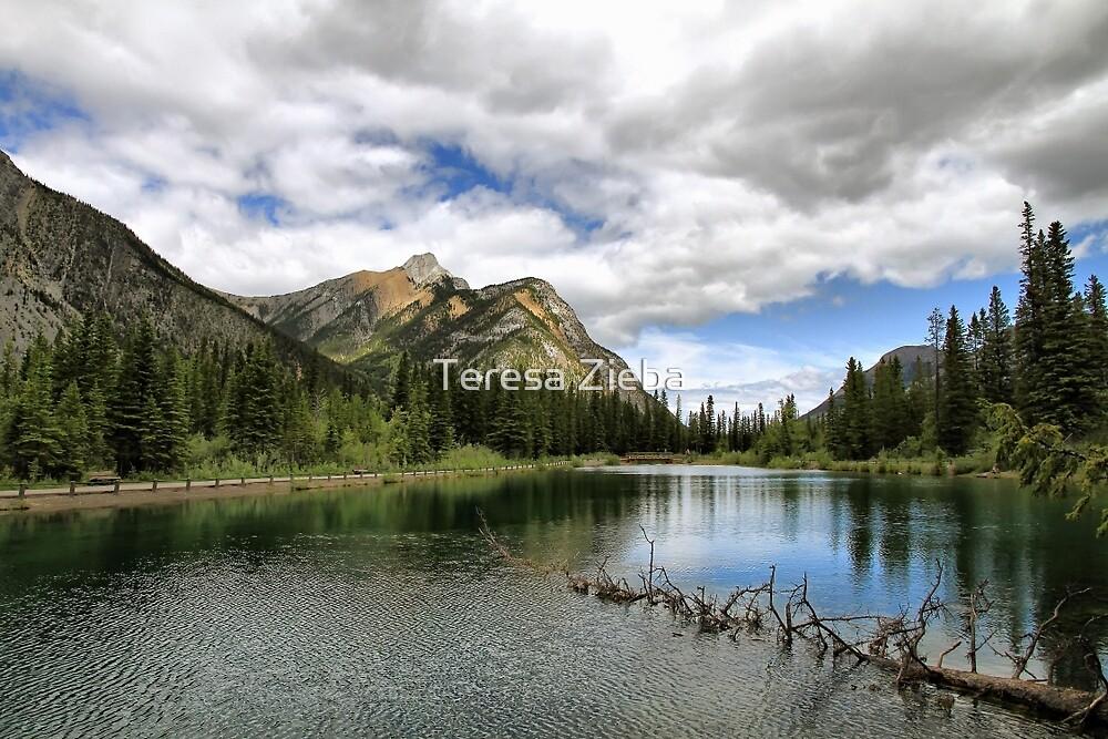 Mount Lorette Ponds by Teresa Zieba