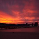 grain terminal sunset by Charlie Watkins