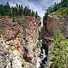 Sinclair Canyon, Kootenay NP, BC, Canada by Teresa Zieba