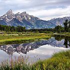 Schwabacher Landing, Grand Tetons NP by Teresa Zieba