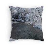 trout stream Throw Pillow