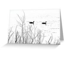 Geese on Shabbona Lake Greeting Card