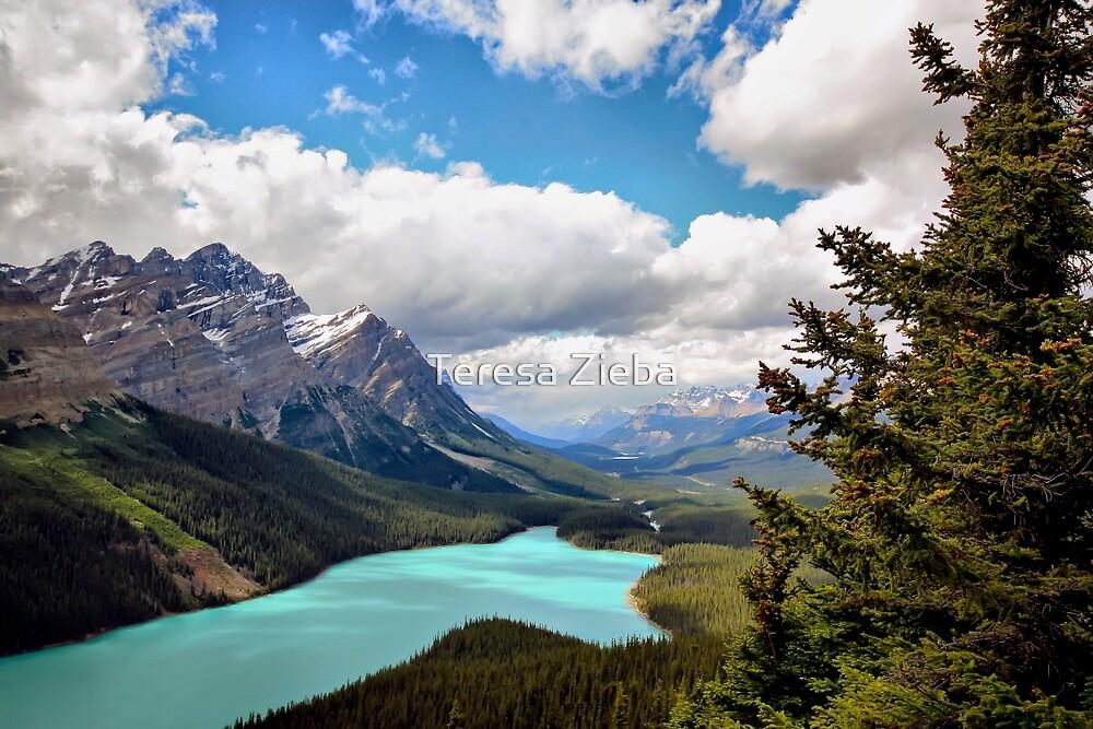 Peyto Lake, Banff NP, Alberta, Canada by Teresa Zieba