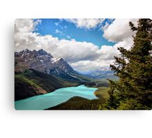 Peyto Lake, Banff NP, Alberta, Canada Canvas Print