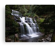 Liffey Falls Canvas Print