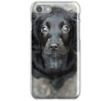 Duke iPhone Case/Skin