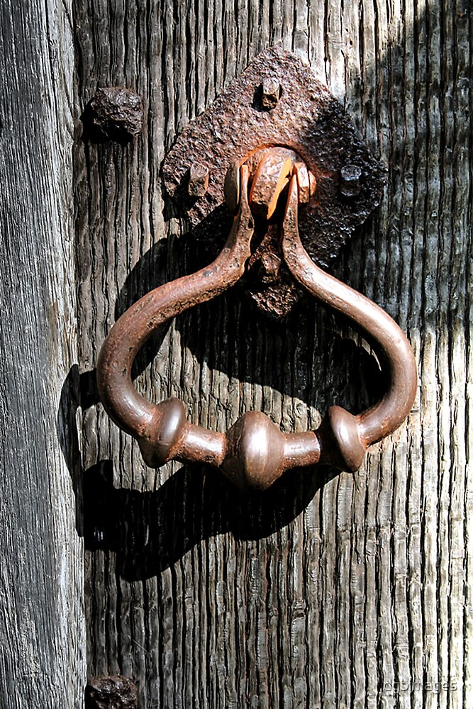 Door Knocker - 1 by dgbimages