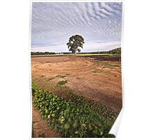 the planting fields Poster
