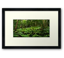 The Undergrowth Framed Print