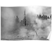 Lower Geyser Basin - Yellowstone Poster