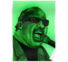 Stevie Wonder celebrity portrait 129 views Poster