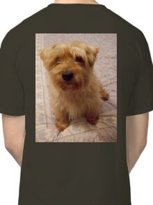 Cute Dogs, 'Harvey', Cairn Terrier Cross Classic T-Shirt