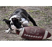 Its Puppy Football Time Photographic Print