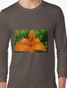 Reach for the Sky! Orange Lily and Buds Long Sleeve T-Shirt