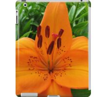 Reach for the Sky! Orange Lily and Buds iPad Case/Skin
