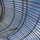 Glass House Roof by Caoimhe Mc Carthy