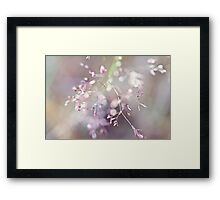 The first time her laughter unfurled.... Framed Print