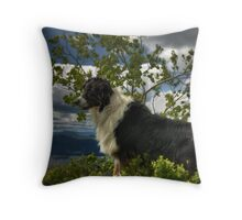 Odin on Mount Sleeping Beauty Throw Pillow