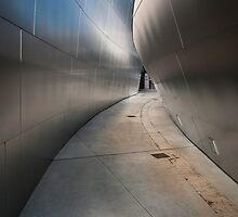 Next Few Steps by Kevin Bergen