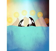 Orcas under the Sun Photographic Print